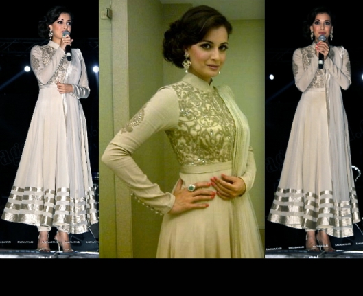 Dia-Mirza-At-The-Karuna-Musical-Concert-hyderabad-shantanu-and-nikhil