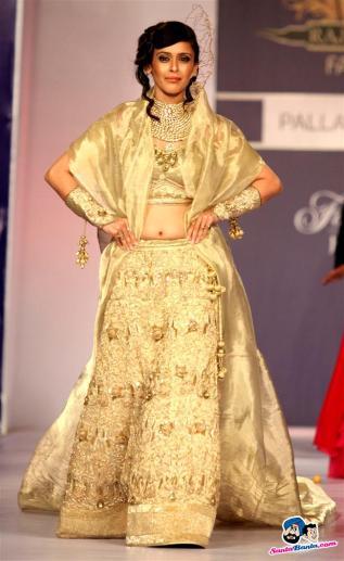 rajasthan-fashion-week-2013-hrishita-bhatt